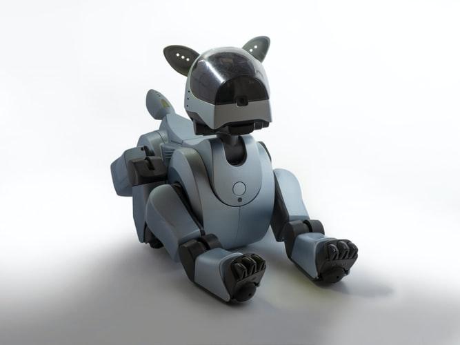 真狗地位不保了?!人工智慧機器狗Aibo將取代?!(上)