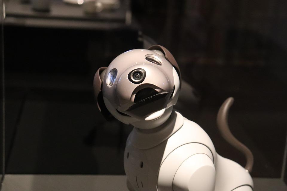 真狗地位不保了?!人工智慧機器狗Aibo將取代?!(下)