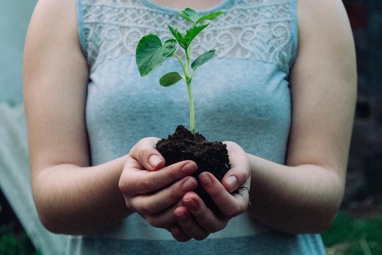 人工智慧帶領農牧業更創新-智慧農業篇